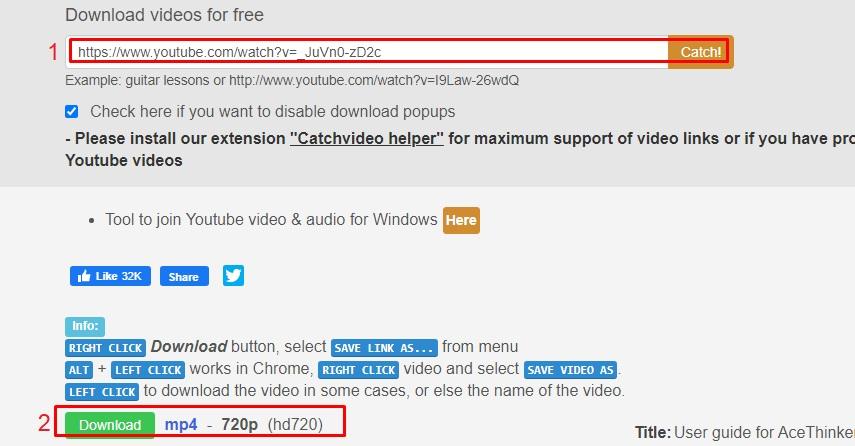 url video downloader catch video
