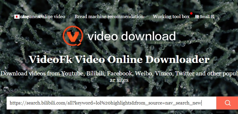 videofk paste bilibili link