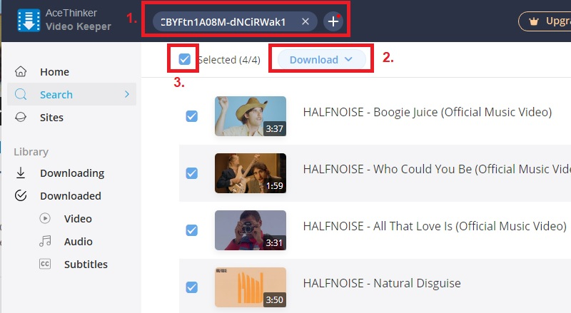 download youtube playlist vk step2